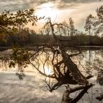 Intermezzo: Hiller Moor